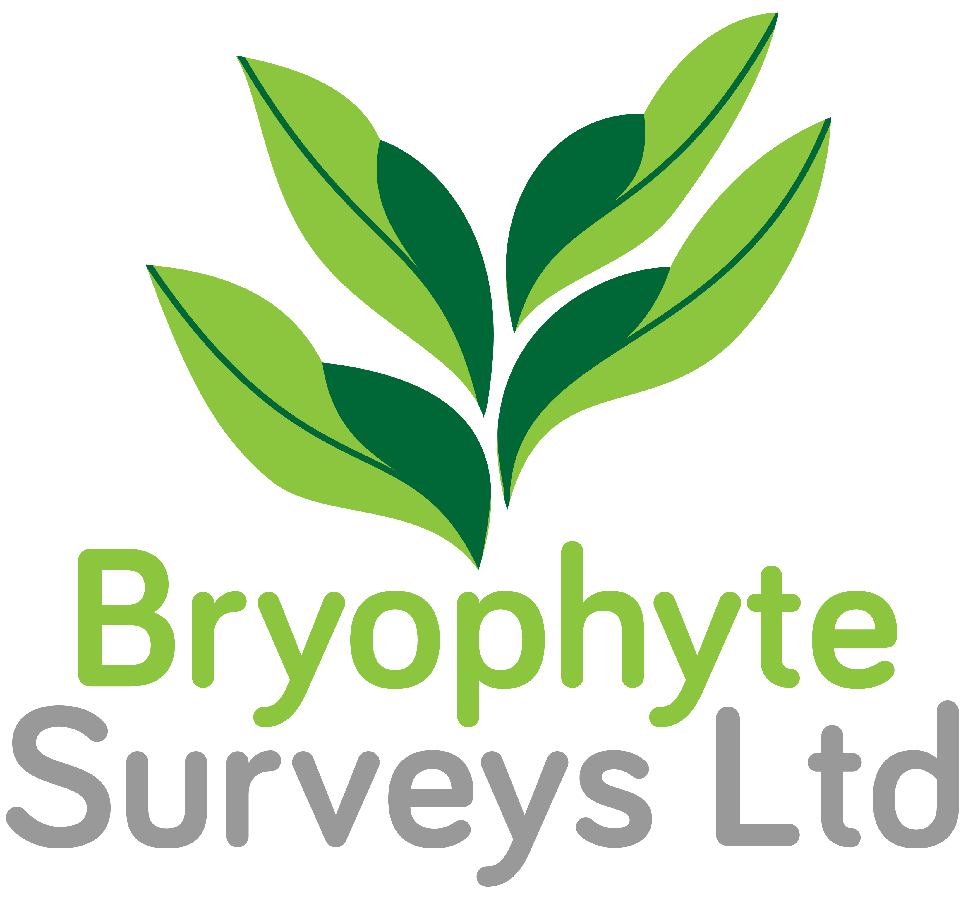 Bryophyte Surveys Ltd Logo